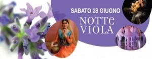 notte-viola_mainstory1